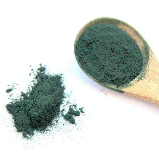 Polvere di alga Spirulina Alle Radici della Vita
